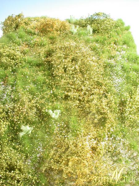 Wildwuchsgebiet/ Proliferation Area Frühling Größe: ca. 25x15,5 cm Maßstab: 1:87