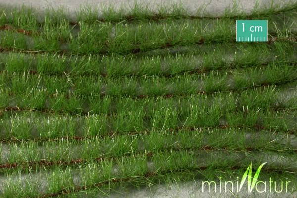 Agrarstreifen Größe: ca. 231 cm Sommer 1 : 45+ Stück