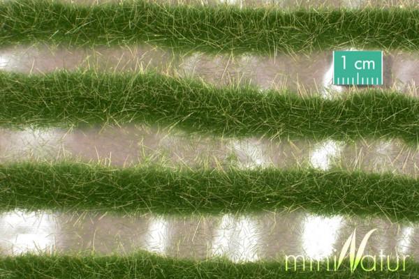 Karststreifen / Two coloured grass strips Sommer Größe: ca. 252 cm Maßstab: 1:45