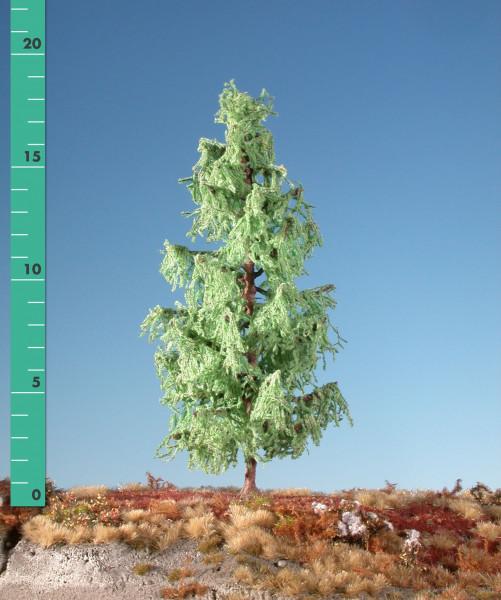 Lärche/ Larch Frühling Größe: ca. 39 cm