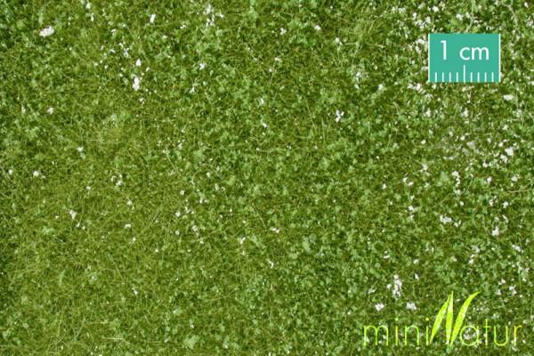 Kleewiese Größe: ca. 63x50 cm Frühling 1 : 87 Stück