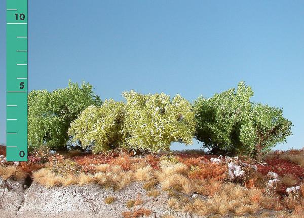 Büsche niedrig/ Low shrubs Frühling Größe: ca. 4 cm