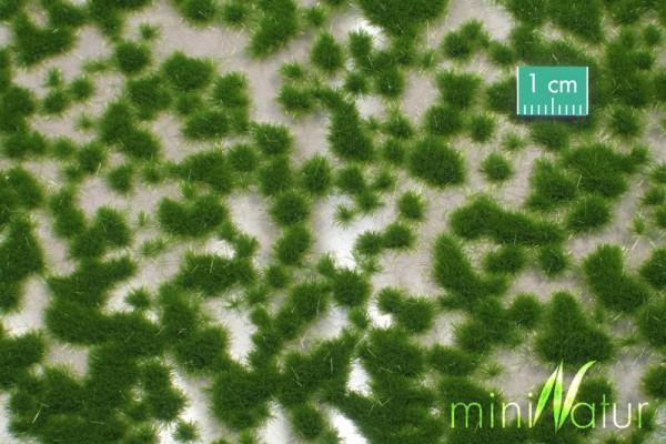 Grasbüschel kurz Größe: ca. 42x15 cm Sommer 1 : 87 Stück