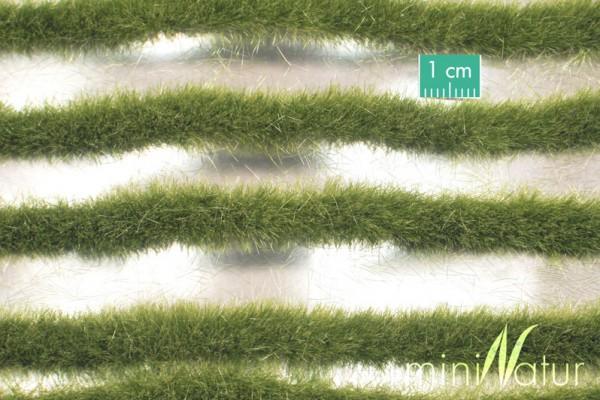 Grasstreifen lang Größe: ca. 336 cm Frühherbst 1 : 87 Stück