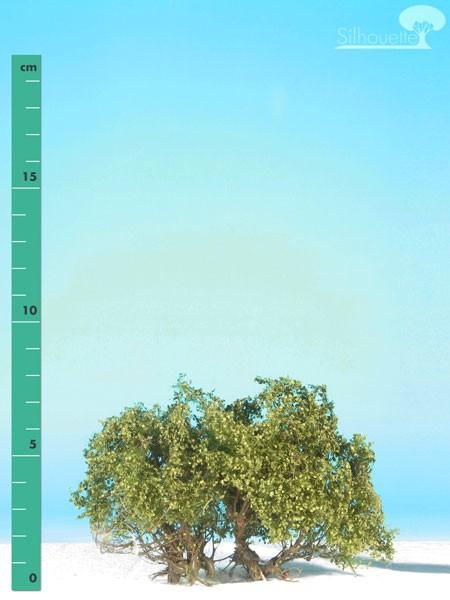 Büsche halbhoch/ High shrubs Sommer Größe: ca. 8 cm