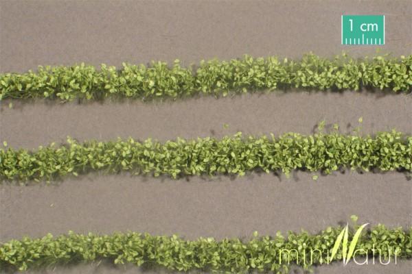 Agrarstreifen mit Blättern Größe: ca. 420 cm Frühling 1 : 87 Stück