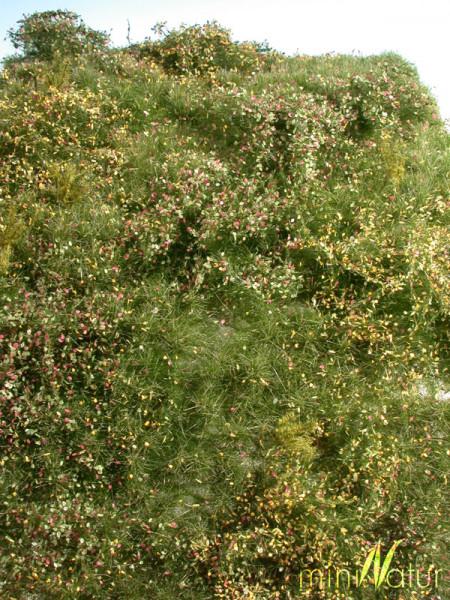 Wildwuchsgebiet/ Proliferation Area Frühherbst Größe: ca. 25x15,5 cm Maßstab: 1:87