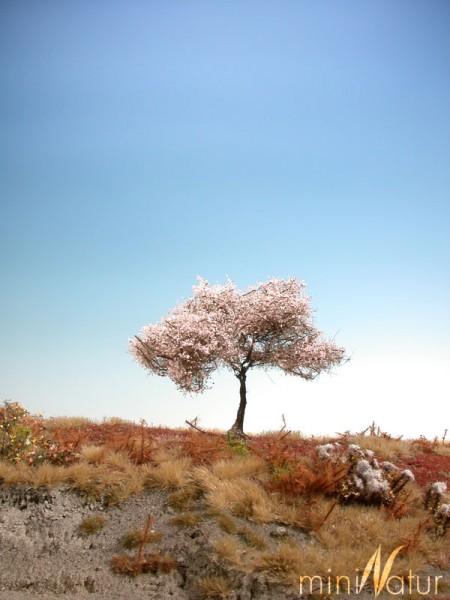 Kirschbaum Größe: 0 rosa 2 Stück