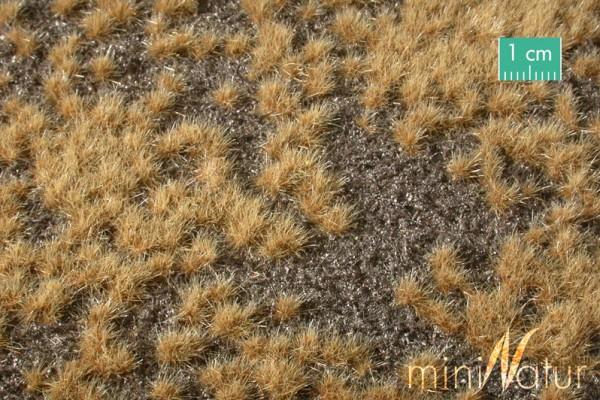 Erdboden bewachsen Overgrown dark ground Spätherbst Größe: ca. 31,5x25 cm Maßstab: H0/0