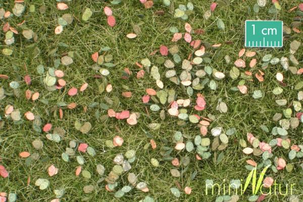 Wiese mit Unkraut /Pasture with weeds Frühherbst Größe: ca. 31,5x25 cm Maßstab: 1:45