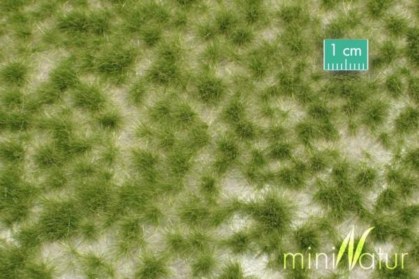 Grasbüschel lang / Long tufts Frühherbst Größe: ca. 42x15 cm Maßstab: 1:87