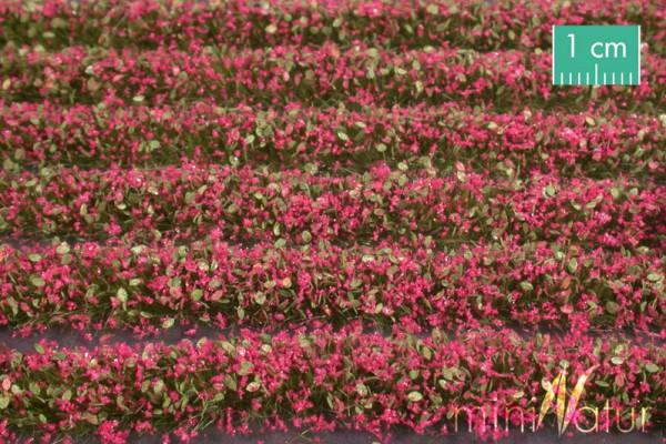 Blütenstreifen Größe: ca. 336 cm magenta 1 : 87 Stück