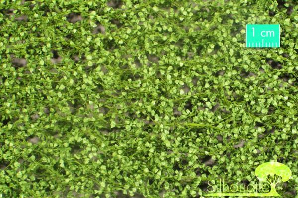 Pappellaub /Lombardy poplar foliage Frühling Größe: ca. 50x31,5 cm Maßstab: 1:45