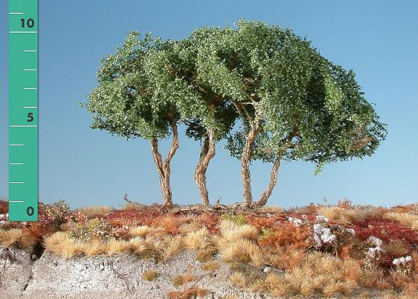 Busch, halbhoch/ High shrubs Sommer Größe: ca.19cm