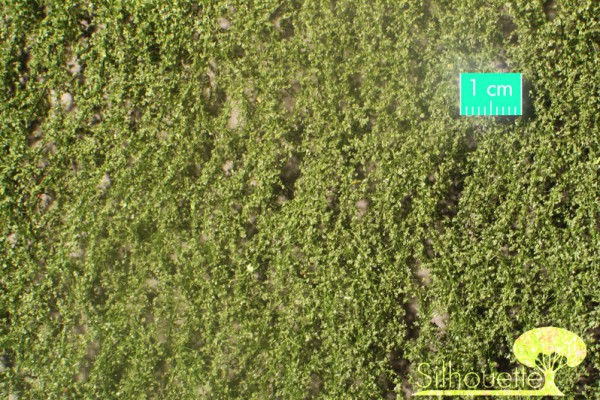 Birkenlaub / Birch foliage Sommer Größe: ca. 63x50 cm Maßstab: 1 : 160-220