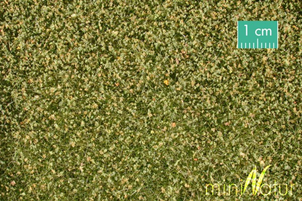 Kleewiese Größe: ca. 63x50 cm Frühherbst 1 : 87 Stück