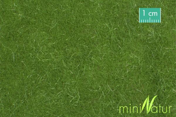 Rasen lang Größe: ca. 63x50 cm Sommer 1 : 87 Stück