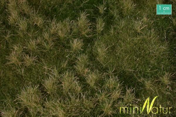 Auenwiese / Fertileplain meadow Frühherbst Größe: ca. 25x15,5 cm Maßstab: H0/0