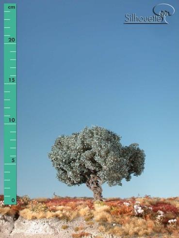 Olivenbaum/ Olive-tree Sommer Größe: ca. 24 cm
