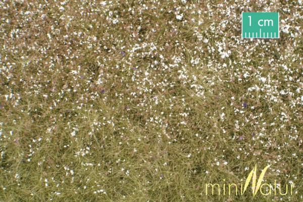 Wiese mit Blüten Größe: ca. 63x50 cm Spätherbst 1 : 87 Stück